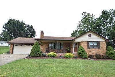 Poland Single Family Home For Sale: 8531 Van Dr