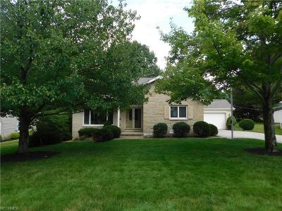 Rocky River Single Family Home For Sale: 18938 Schlather Ln