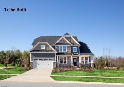 Medina Single Family Home For Sale: 6271 Hooper Dr
