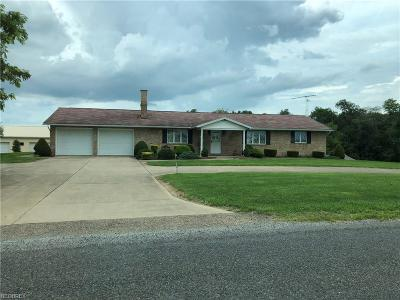 Single Family Home For Sale: 29456 Carey Rd