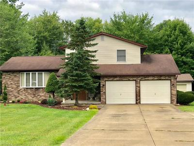 Canfield Single Family Home For Sale: 5824 Calico Ln