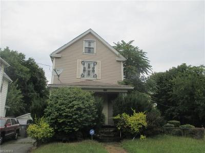 Youngstown Single Family Home For Sale: 1036 Mercer St