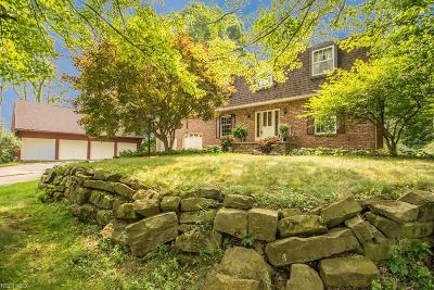 Canfield Single Family Home For Sale: 9199 Leffingwell Rd