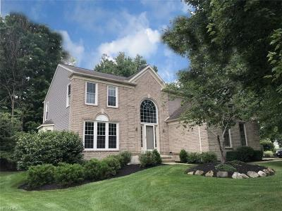 Twinsburg Single Family Home For Sale: 2337 Champion Trl