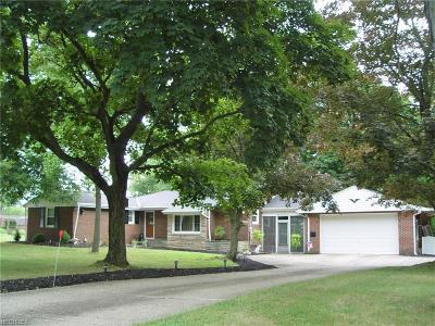 Broadview Heights Single Family Home For Sale: 8067 Elmhurst Dr