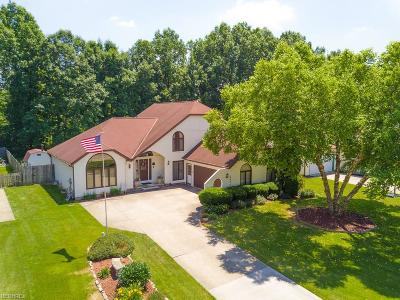 North Ridgeville Single Family Home For Sale: 8875 Harris Dr