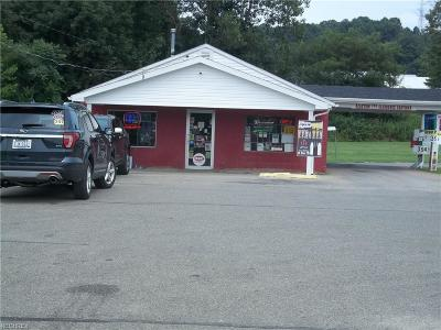 Perry County Commercial For Sale: 5230 Ceramic