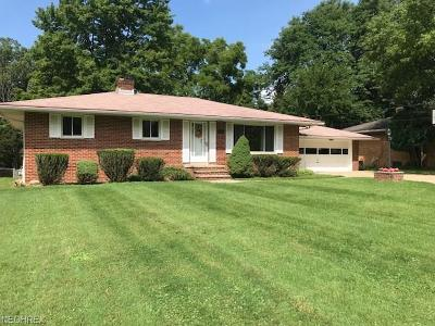 North Royalton Single Family Home For Sale: 9402 State Rd