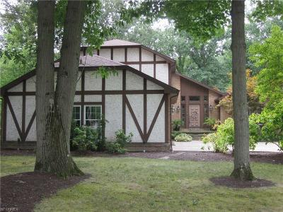 Canfield Single Family Home For Sale: 2935 Whispering Pines Dr
