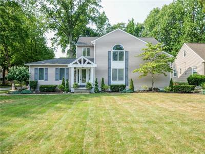 Bay Village Single Family Home For Sale: 24007 Lake Rd