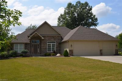 Broadview Heights Single Family Home For Sale: 8642 Avery Rd