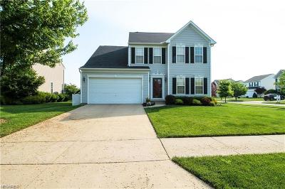 Painesville OH Single Family Home For Sale: $228,500