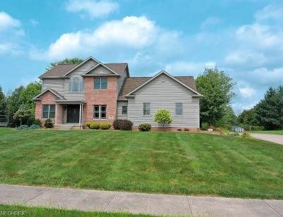 Canfield Single Family Home For Sale: 94 Alabaster