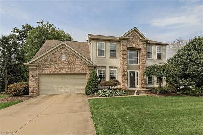Twinsburg Single Family Home For Sale: 9144 Ashcroft Ln