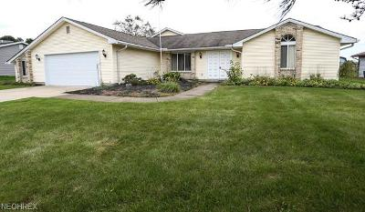 Boardman Single Family Home For Sale: 653 Cathy Ann Dr