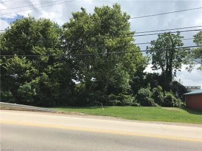 Licking County Residential Lots & Land For Sale: 4875 Walnut Rd