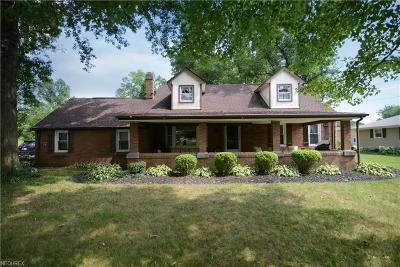 Canfield Single Family Home For Sale: 7287 Youngstown Salem Rd