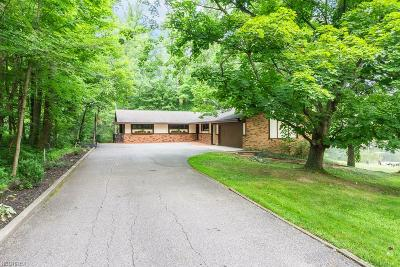 Solon Single Family Home For Sale: 34525 Sherbrook Park Dr