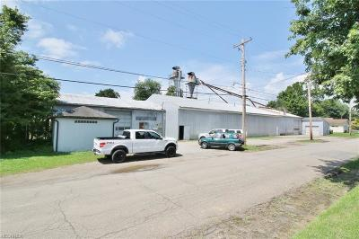 Zanesville Commercial For Sale: 135 Kensington Ave