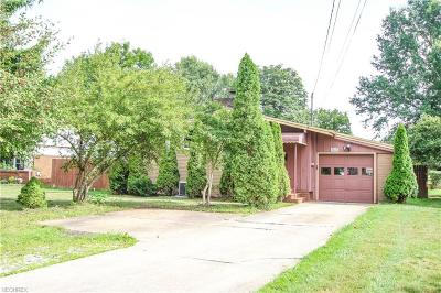 Youngstown Single Family Home For Sale: 2469 Canfield Rd