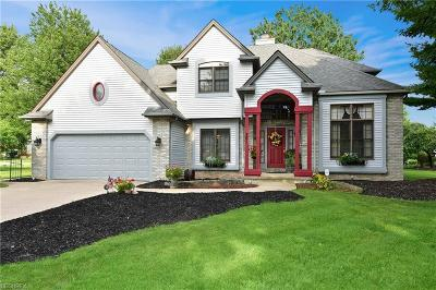 Single Family Home For Sale: 751 Firestone Dr