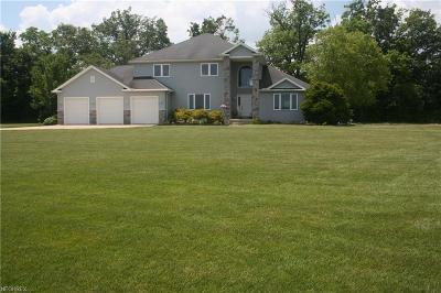 Huron County Single Family Home For Sale: 4479 River Rd