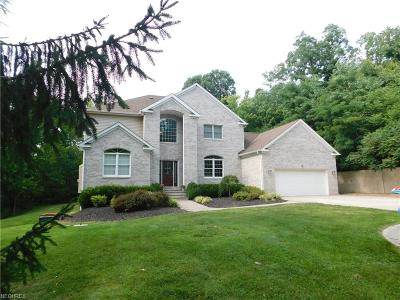 Amherst OH Single Family Home For Sale: $429,900