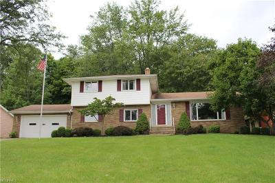 Brecksville Single Family Home For Sale: 8074 Farview Oval