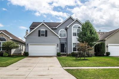 North Ridgeville Single Family Home For Sale: 5091 Ravenway Dr