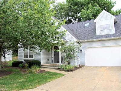 Twinsburg Condo/Townhouse For Sale: 10483 White Ash Trl #17H