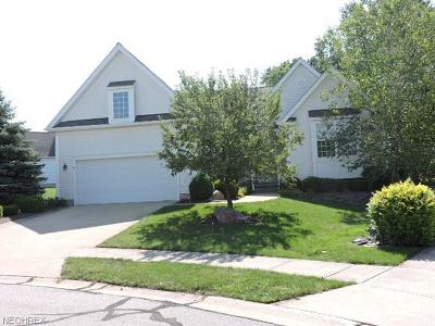 Brecksville, Broadview Heights Single Family Home For Sale: 2841 Boxwood Ct