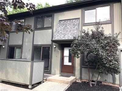 Rental Leased: 34991 North Turtle Trl #4-A