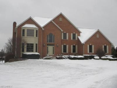 Poland Single Family Home For Sale: 8104 Via Bellagio