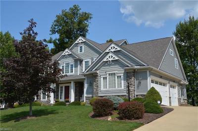 Medina Single Family Home For Sale: 6439 Torington Dr