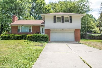 Warren Single Family Home For Sale: 570 Niles Cortland Rd Northeast