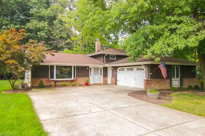 Strongsville Single Family Home For Sale: 20750 Wolzhaven Ave
