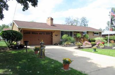 Austintown Single Family Home For Sale: 3936 Artmar Drive