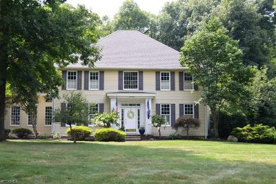Hudson Single Family Home For Sale: 1360 Hunting Hollow Dr