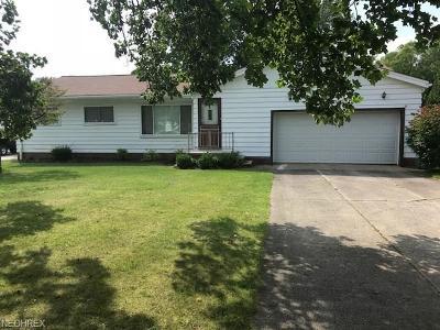 Strongsville Single Family Home For Sale: 9634 Webster Rd