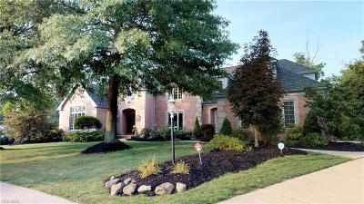 Deerfield Woods Single Family Home For Sale: 19221 Ridgeline Ct