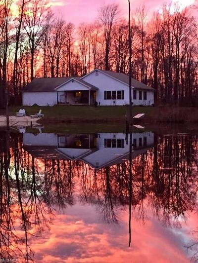 Ashtabula County Single Family Home For Sale: 818 Howard Rd