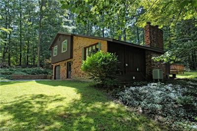 Chardon Single Family Home For Sale: 8850 Robinson Rd