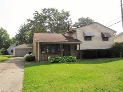 Elyria Single Family Home For Sale: 693 North Abbe Rd