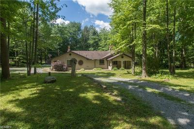 Canfield Single Family Home For Sale: 9320 Knauf Rd