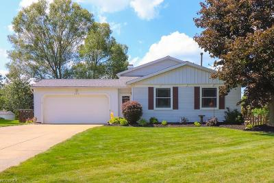 Twinsburg Single Family Home For Sale: 10374 Belleau Dr