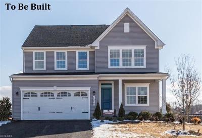 Berea Single Family Home For Sale: 237 Stone Ridge Way
