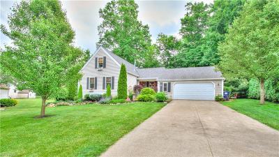 Painesville Township Single Family Home For Sale: 631 Lanark Ln
