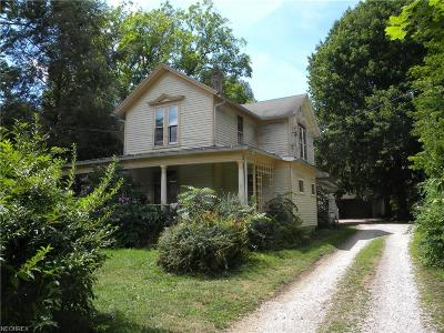 Kent Single Family Home For Sale: 1234 North Mantua St