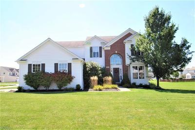 Olmsted Falls Single Family Home For Sale: 9619 Kingston Trl