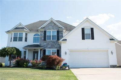 Painesville Single Family Home For Sale: 1542 Commodore Cv